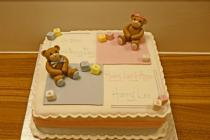 Double Teddy Cake (155)