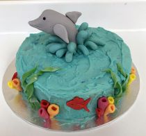 Dolphin Cake Class