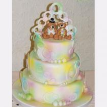 Rainbow Teddies (076)
