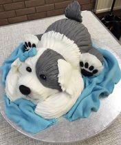 Carved Dog Cake Workshop