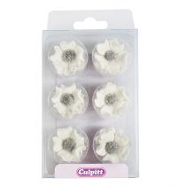 Sugar Anemones - White 28mm